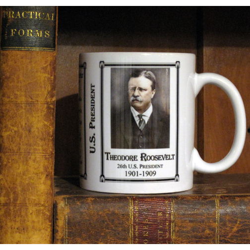 Theodore Roosevelt mug in bookcase