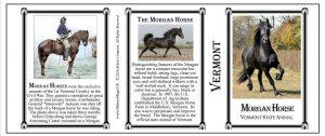 Morgan Horse Vermont history mug tri-panel.
