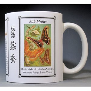 History Mug about Silk Moths.