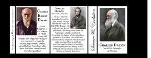 Charles Darwin Science & Inventions history mug tri-panel.