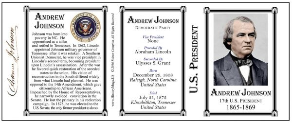 17th US President Andrew Johnson history mug tri-panel.