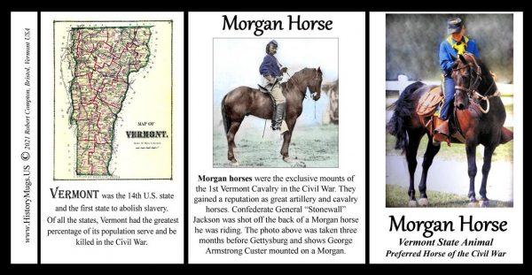 Morgan Horse, US Civil War biographical history mug tri-panel.