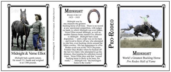 Midnight Pro-Rodeo history mug tri-panel.