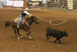 Rodeo category title