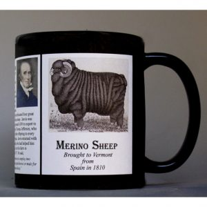 Merino Sheep Vermont history mug.