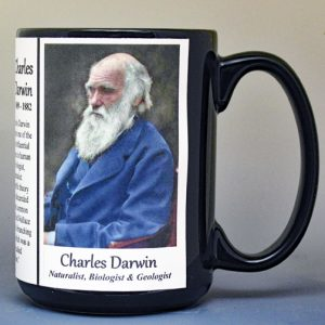 Charles Darwin, naturalist, biologist, and geologist, biographical history mug.