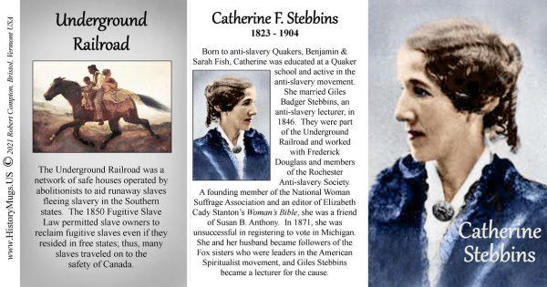 Catherine Stebbins, Women's Suffrage biographical history mug tri-panel.