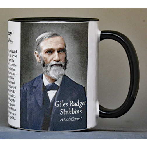 Giles Badger Stebbins biographical history mug.