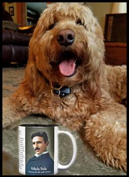Tesla history mug.