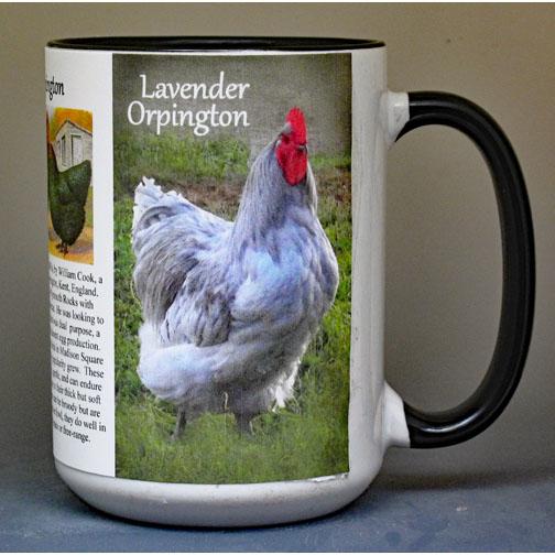 Orpington Chickens biographical history mug.