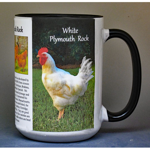 Plymouth Rock Chickens biographical history mug.